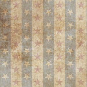 Americana Stars Cross Stitch Fabric - Fabric Flair